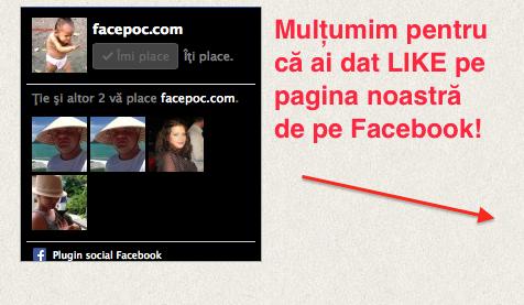 facebok_like